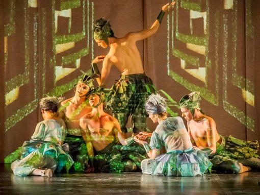 <b>ARMIDE</b><br></br><p>dancer | rehearsal director</p>